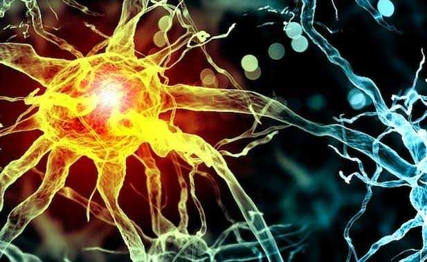 Artificial neurons developed to cure chronic diseases