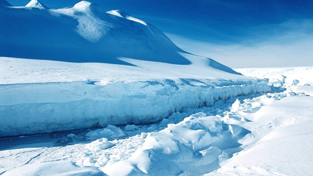 Possible new record as Antarctica's temperature soars