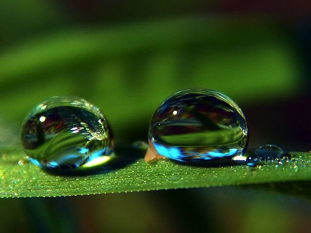Interesting Merger Moment Shot of Two Droplets with High Speed ...
