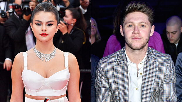 Niall Horan hopes to collaborate with close pal Selena Gomez
